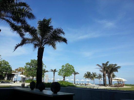 Hyatt Regency Danang Resort & Spa :                                     Greenhouse.