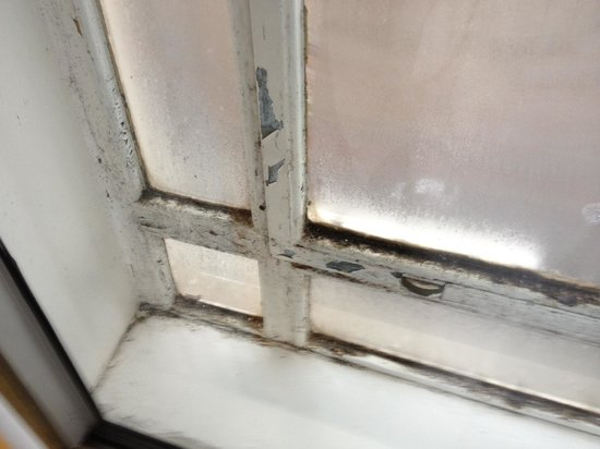 The Queens - Leeds: Mouldy window frame