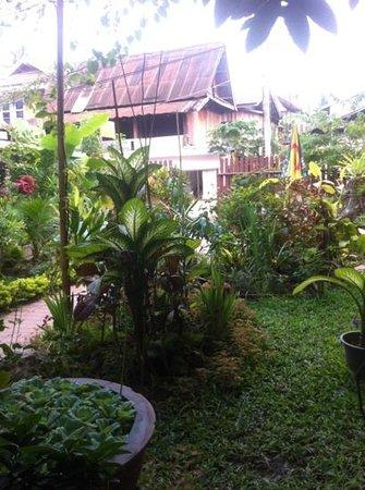 Oudomphong Guest House :                   jardin de la guesthouse