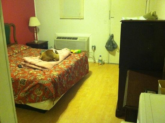 Morgantown Motel : king bed and hardwood