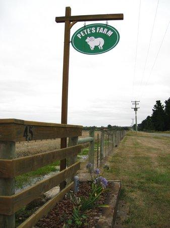 皮特農場民宿照片