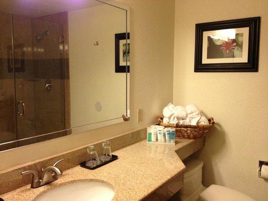 Wyndham Garden Austin: Super Clean Bathroom