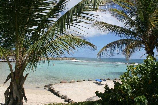 Le Manganao Hotel Club Paladien:                                     plage de l'hotel