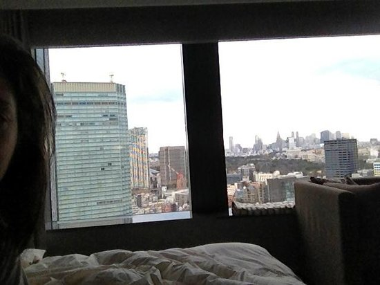The Capitol Hotel Tokyu:                   Left side view from bed