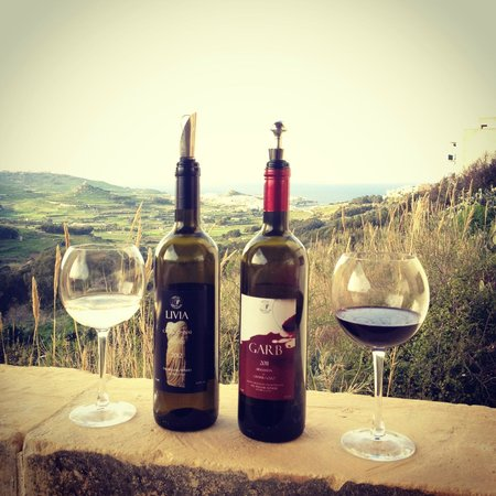 Tal-Massar Winery:                   Wine with astonishing views