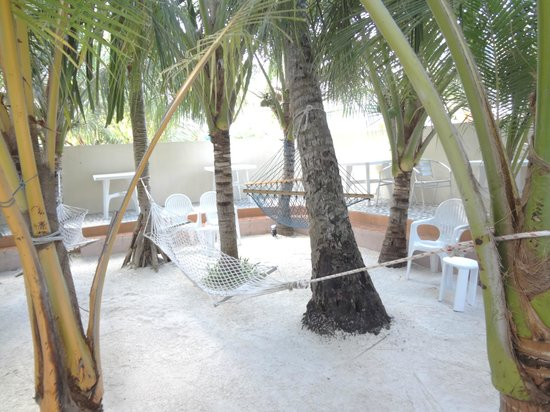 Stingray Beach Inn:                   Hammock Area