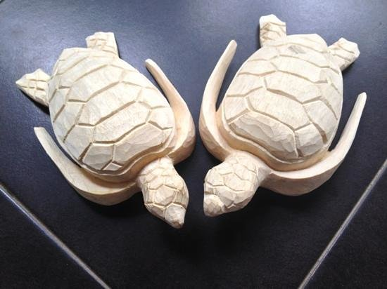 WS Art Studio:                   Turtles made in the 3 hour wood carving course