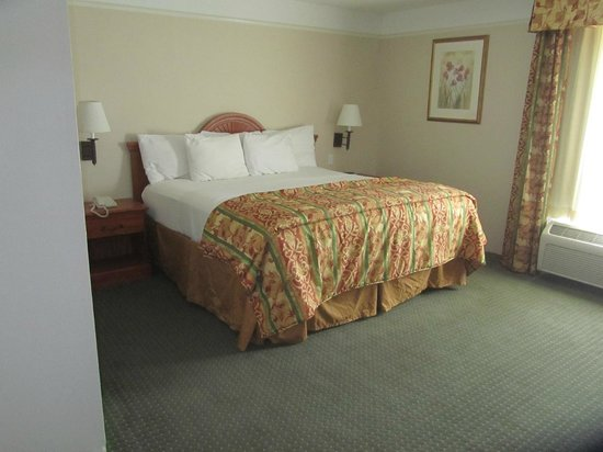 La Quinta Inn & Suites Ruidoso Downs :                   Nice big bedroom in King Suite, TV mounted on wall opposite bed.