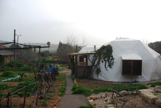 Yarok Az Organic Goat Farm:                   The ecodome, sideview