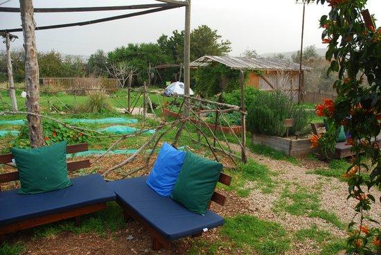 Yarok Az Organic Goat Farm:                   Places to sit in the garden