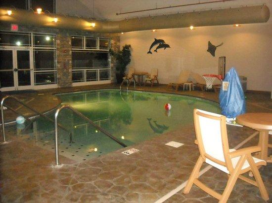 Clarion Inn Dollywood Area :                   Pool Area
