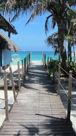 Melia Cayo Coco: plage