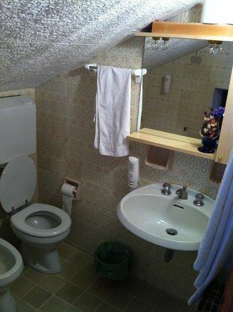 Hotel Teola:                   bagno