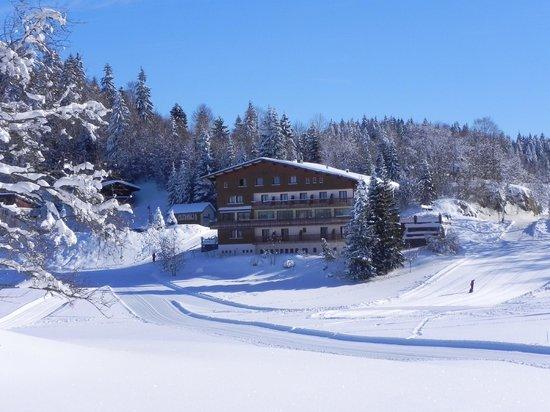 Logis La Spatule :                                     Vue d'une piste de ski de fond à l'arrière de l'hôtel.