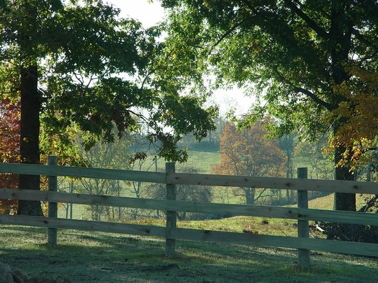 Cherry Ridge Retreat: Countryside View