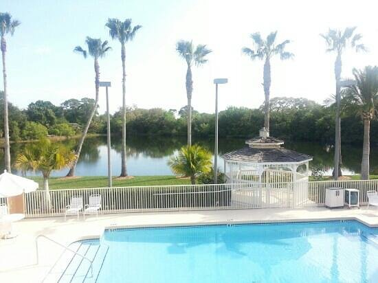 Comfort Inn Near Ellenton Outlet Mall :                   Beautiful setting in back of hotel