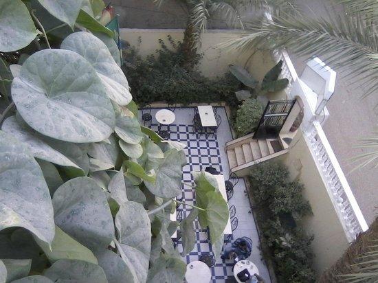 Little Garden Hotel: the garden