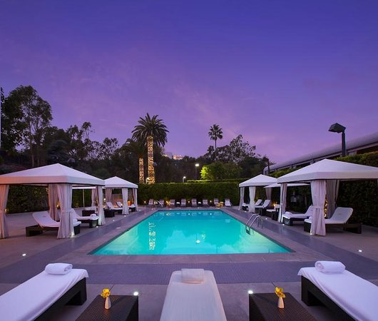 Luxe sunset boulevard hotel los angeles ca hotel - Best hotel swimming pools in los angeles ...