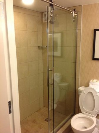 Crowne Plaza Boston Woburn: shower - no bath