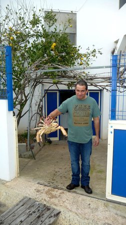 Odemira, Portugal:                                     This crab was being delivered to the restaurant. A light sna