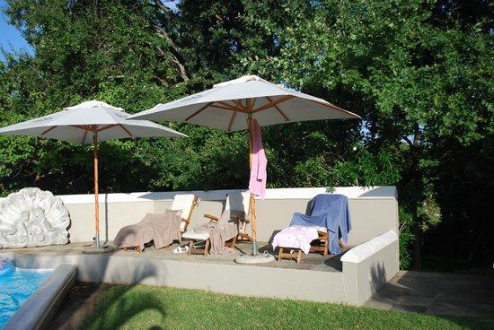Schoone Oordt Country House:                   Pool und Liegen