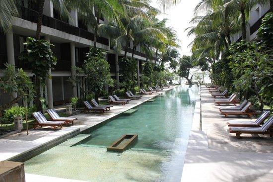 The Oasis Beach:                   Swimming pool