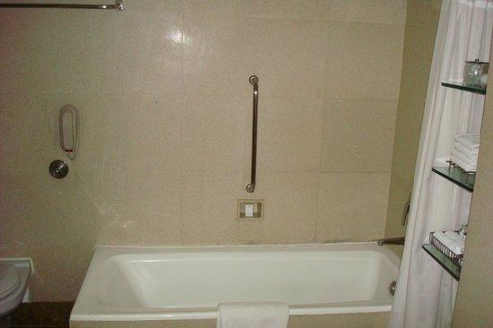 Jaypee Vasant Continental:                   Banheiro