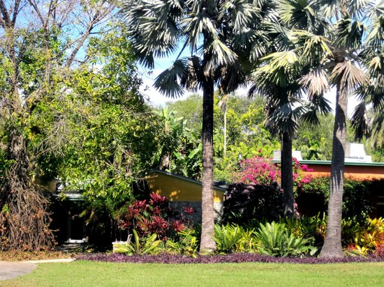 Palms picture of fairchild tropical botanic garden - Fairchild tropical botanic garden hours ...