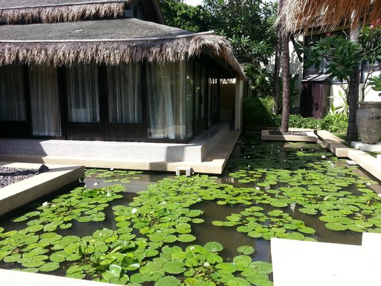 Impiana Resort Patong Phuket :                   Lotus Pool