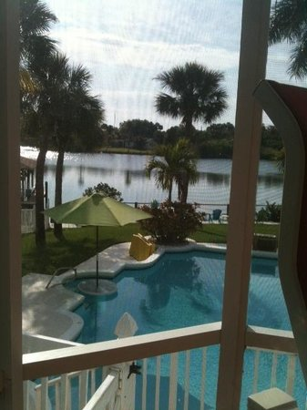 Crane Creek Inn Waterfront Bed and Breakfast :                   View from our room The royal palm
