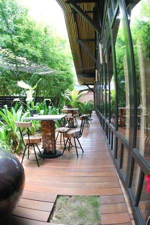 The Happy 8 Retreat @ Pasir Puteh:                   garden area