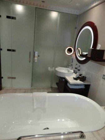 فندق سوفتل:                   hab 1502                 