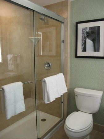 Hilton Garden Inn Washington DC/US Capitol:                   Shower - King Rooms