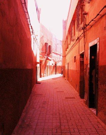 Riad Vert Marrakech:                   Outside of the Riad Vert