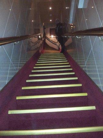 Hotel Nadia: Ripido