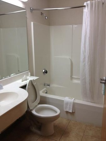 Microtel Inn & Suites by Wyndham Uncasville: nice clean bathroom