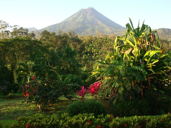 Arenal Manoa Hotel:                   View from our patio