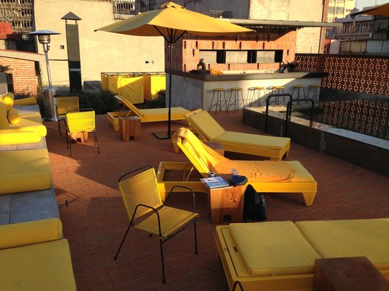 Hotel Downtown Mexico:                   chic rooftop