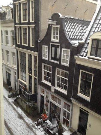 The Blue Sheep Bed & Breakfast Amsterdam:                   vista