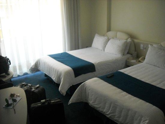 Hotel Century Zona Rosa Mexico:                   habitacion