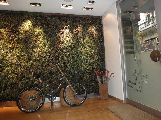 "Casa Calma Hotel:                   Uma charmosa ""parede viva""...."