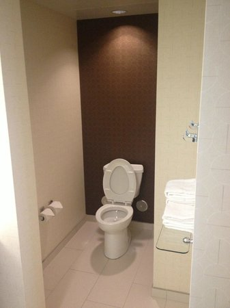 SpringHill Suites Chattanooga Downtown/Cameron Harbor: toilet