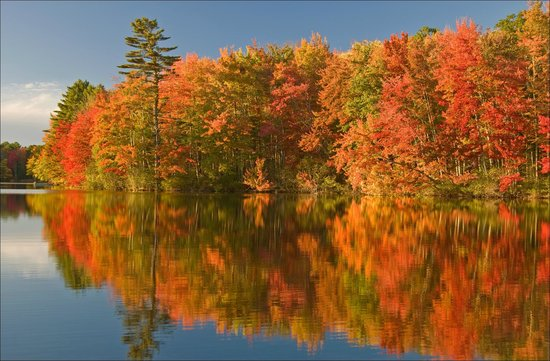 The Scenic Route Maine Tours : Maine's spectacular Fall foliage