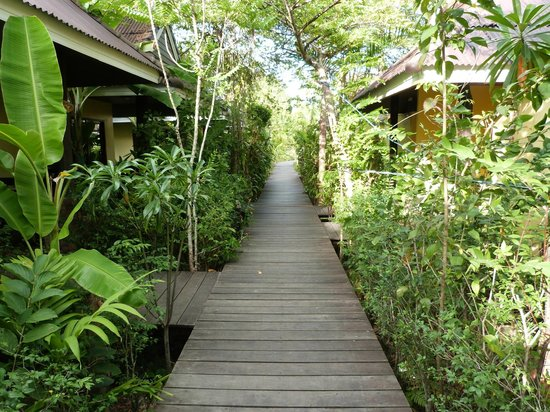 Sunda Resort:                   Walkway outside bungalows