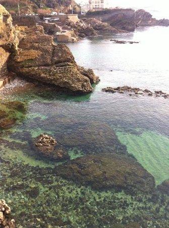 La Côte des Basques : la mer