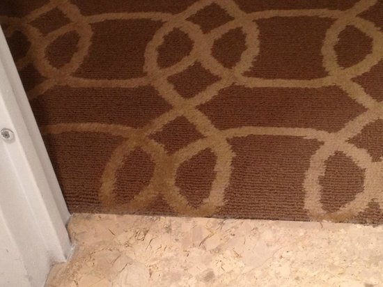 Omni Interlocken Hotel:                   Carpet near bathroom