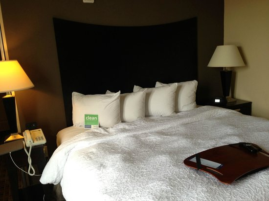 Hampton Inn & Suites Montgomery-Downtown: Bed