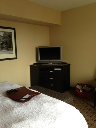 Hampton Inn & Suites Montgomery-Downtown: Bed and TV