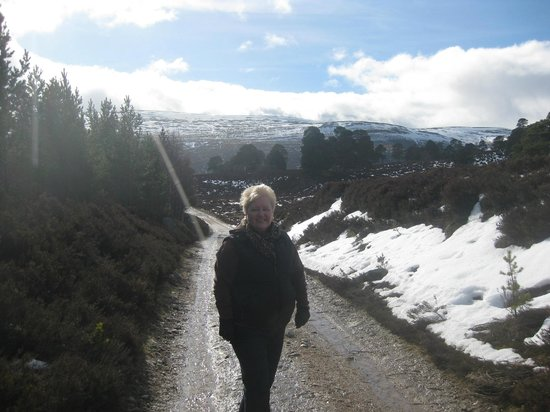 Mar Lodge Estate:                                     Glen Lui trail