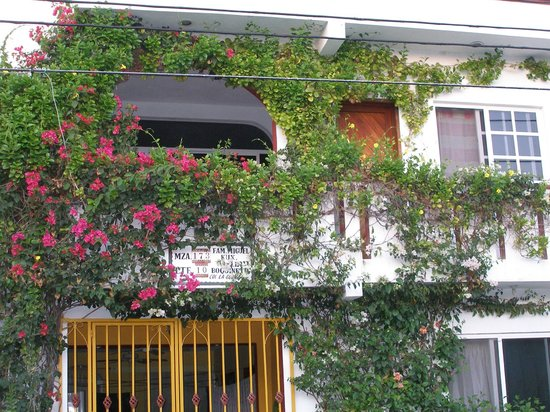 Capi's Apartments:                   The front of the building with the beautiful flowers surrounding the patio
